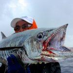 Spanish Mackerel Fiji