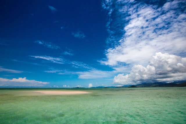 Want to protect our Oceans? Follow us on Twitter @Volivolibeach